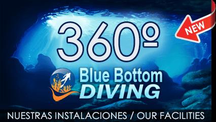 Blue Bottom Diving offer you: