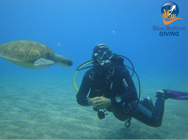 dive BlueBottomDiving Tenerife Facebook